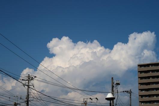 青空に雲がモクモクと