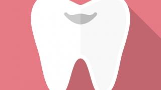 歯(FLAT ICON DESIGNより)