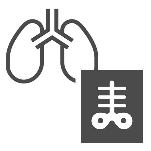 肺とレントゲン写真(icooon-monoより)