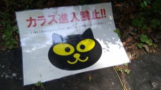 """""""カラス侵入禁止!!"""" なポスター"""