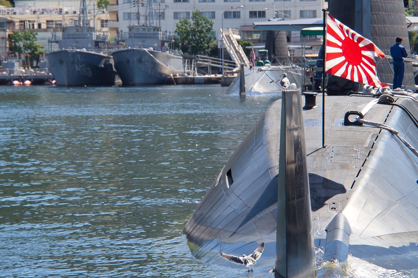 潜水艦で遊ぶカモメ